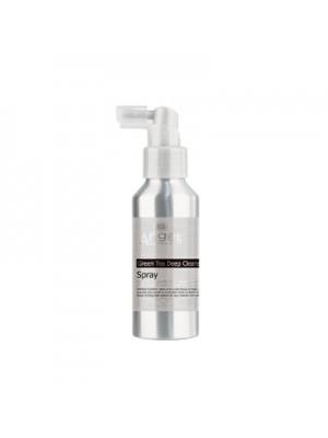 Valantis galvos odą ir apsaugantis nuo pleiskanų purškiklis Green Tea Deep Cleansing Antidandruff Spray 100ml